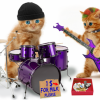 matrice ponuda Muzika i muzički instrumenti